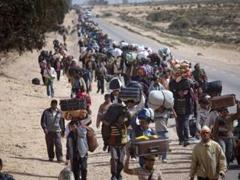 Asilo e Refugiados